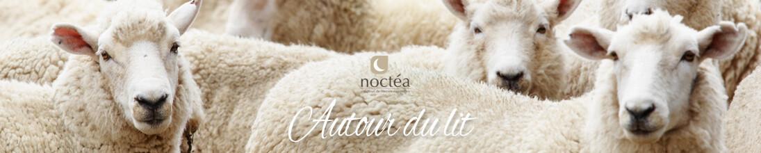 Oreillers en pure laine de mouton écologique et française